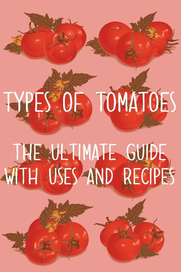 The Different Types Of Tomatoes: The Ultimate Guide of Tomato Varieties