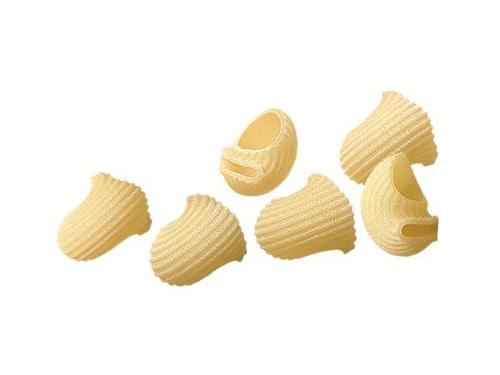 Caracoles tipos de pasta
