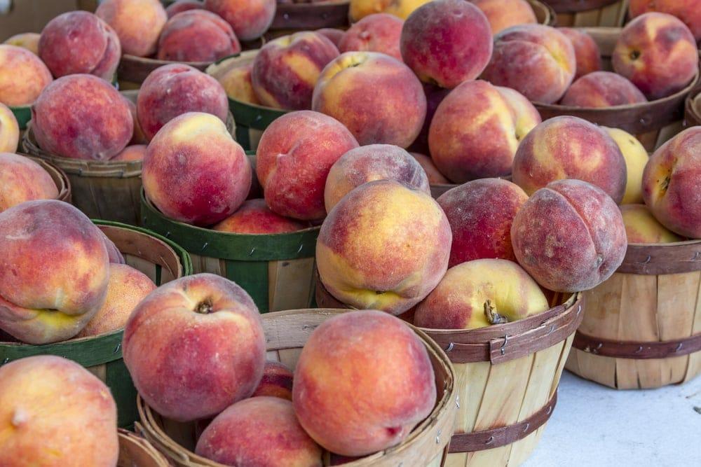 Cases of Peaches