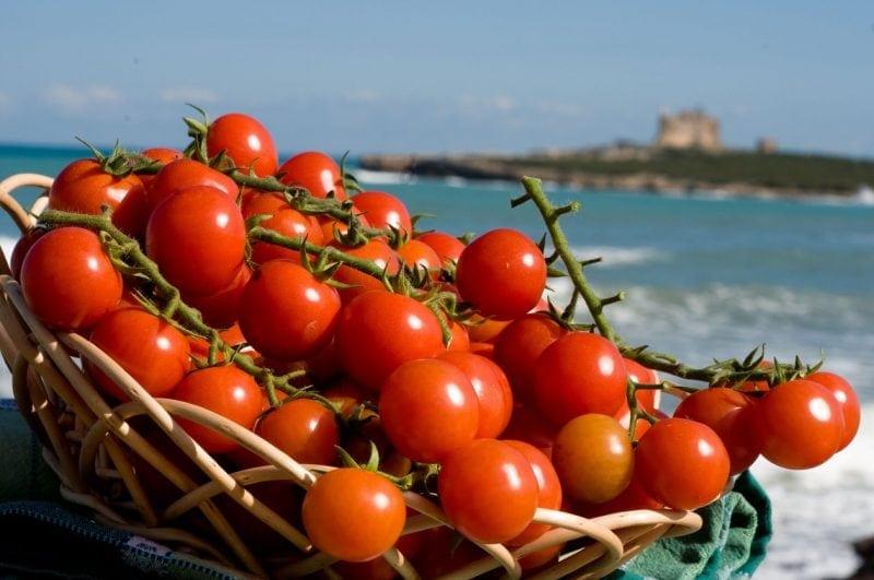 pomodoro pachino tomato
