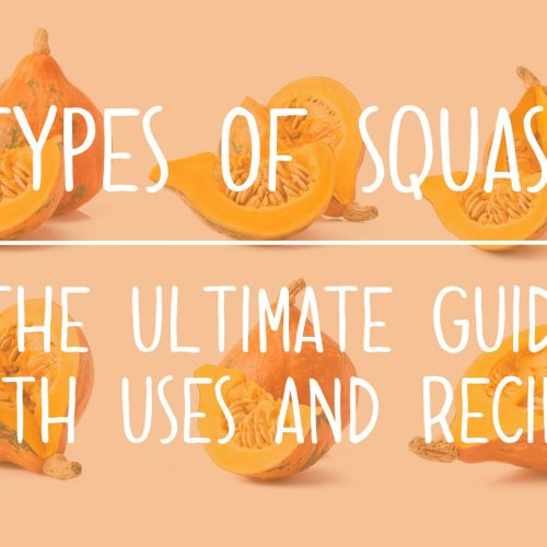 Types of Squash the Ultimate Guide of Squash Varieties