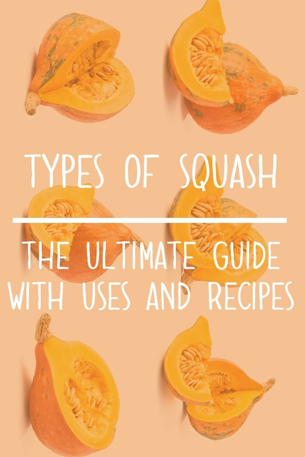 Types of Squash – Squash Varieties Guide with Uses & Recipes