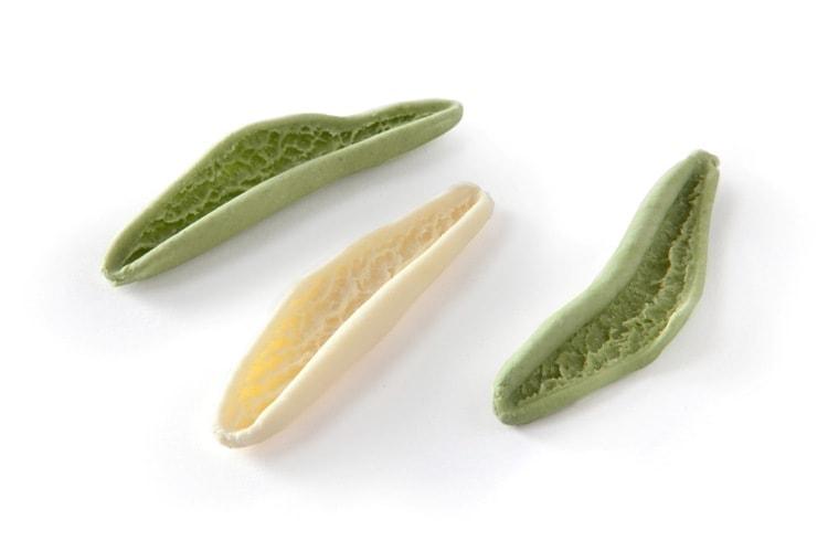 hojas de olivo tipos de pasta