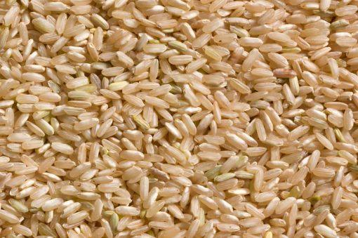 Types of rice varieties