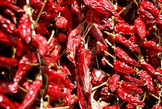 Hot Calabrian Chili