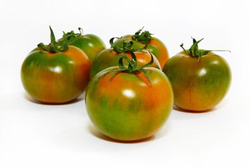 Pomodoro del Camone